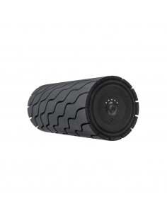 Foam roller Theragun Wave...